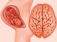 Перинатальная энцефалопатия: ее причины и тактика лечения