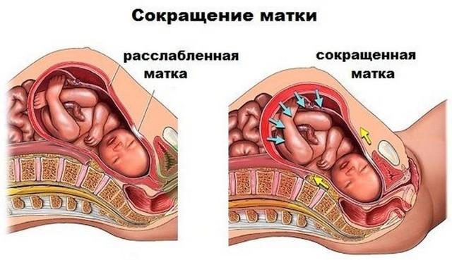 Поглаживания живота при беременности: причины ограничений и альтернатива прикосновениям