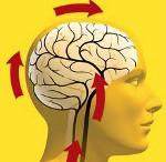 Лечение дисциркуляторной энцефалопатии и её степени