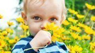 Красные пятна на животе у детей: причины, тревожные признаки, лечение и профилактика