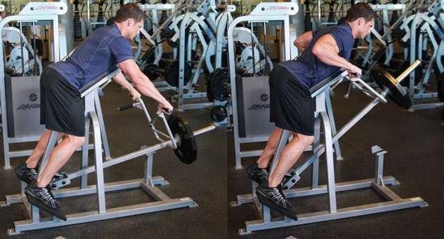 Упражнения на спину в тренажерном зале для девушек и женщин: комплекс для укрепления и прокачки мышц