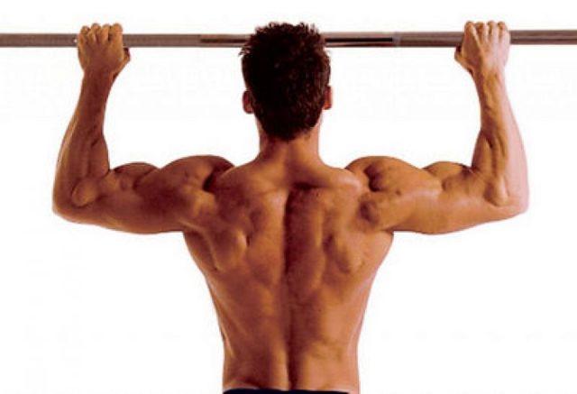 Упражнения на спину в тренажерном зале для мужчин: базовый комплекс, прокачка спины на массу, тренировка для мужчин с опытом