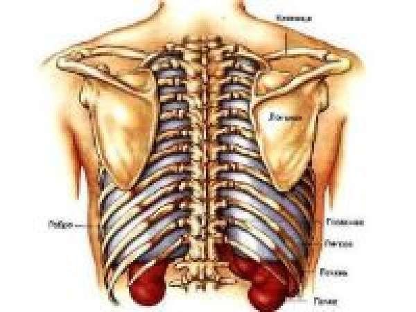 Боль в правом подреберье при вдохе: причины, диагностика, лечение и профилактика