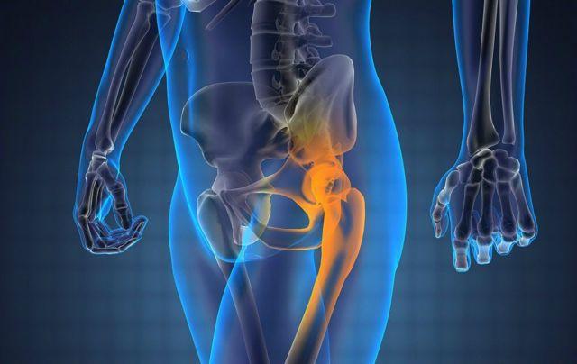 МРТ тазобедренного сустава у взрослых: что показывает, подготовка, цена и фото