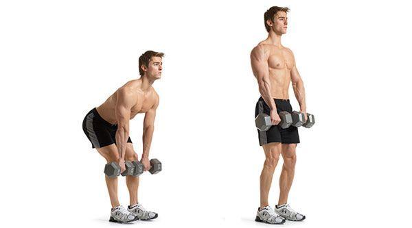 Упражнения на спину с гантелями: тренировка для мужчин и женщин