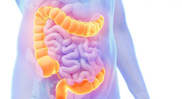 Колит кишечника: симптомы, виды, диагностика и методы лечения