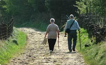 Эндопротезирование шейки бедра у пожилых людей: стоимость операции и имплантов
