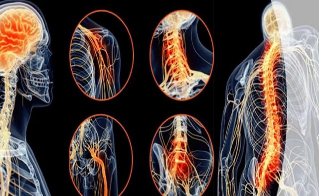 Неврологические заболевания: их виды, причины появления