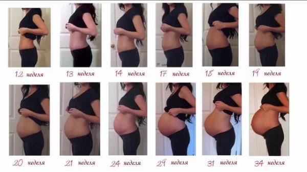 На каком месяце начинает расти живот при второй беременности