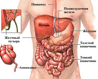 Подготовка к КТ брюшной полости с контрастированием: необходимость и мероприятия