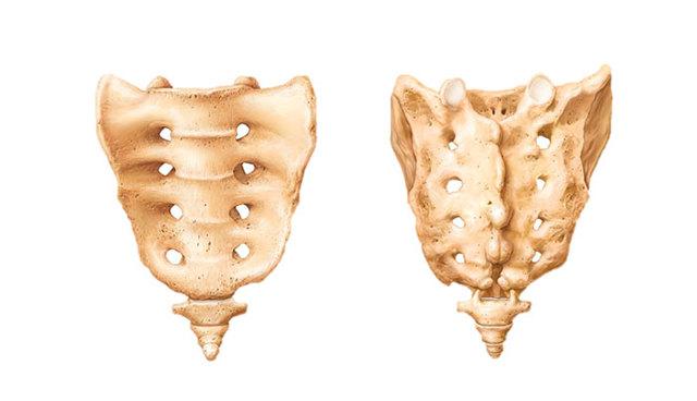 Лечение ушиба копчика: первая помощь, методы терапии и реабилитационный период