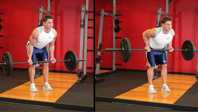 Упражнения на спину со штангой и гантелями: прокачка широчайших мышц, жим лежа, тяга грифа в наклоне и из-за спины