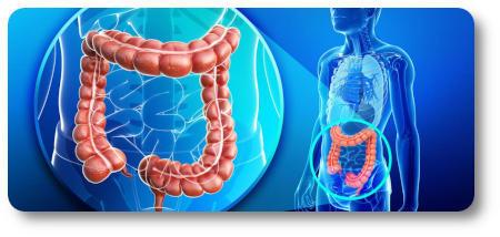 Катаральный колит: симптомы, формы, диагностика и лечение