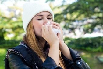 Аллергия на тополиный пух: симптомы, лечение, профилактика