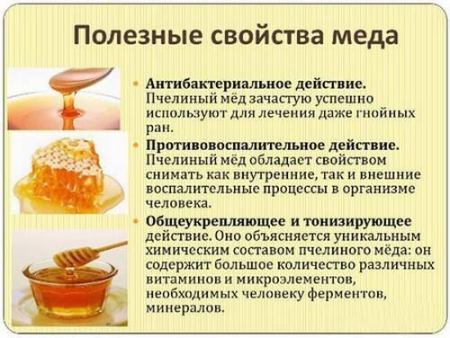 Аллергия на мед: причины и симптомы, диагностика