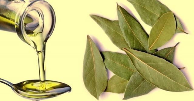 Лечение остеохондроза народными средствами: рисовым квасом, пчелами, солью и маслом, желатином, лавровым листом, мумие, крапивой