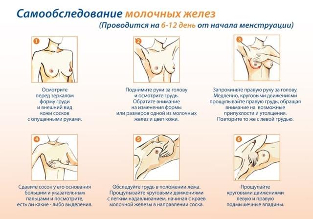 Почему после месячных болят и набухают молочные железы