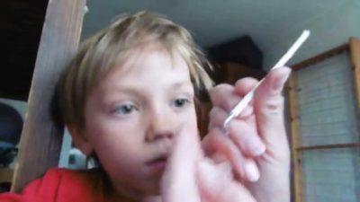 Ребенка укусил клещ в голову: как вытащить клеща и что делать после укуса