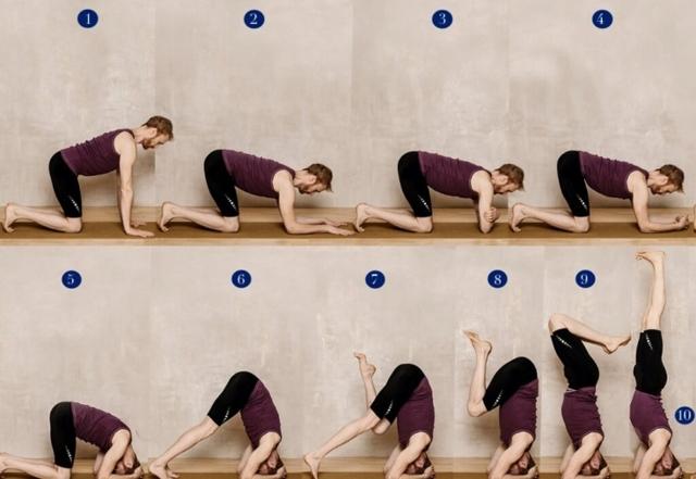Стойка на голове: польза и вред, техника выполнения, подводящие упражнения для начинающих, методика обучения