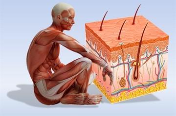 Чем и как лечить псориаз на локтях и коленях: диагностика и профилактика