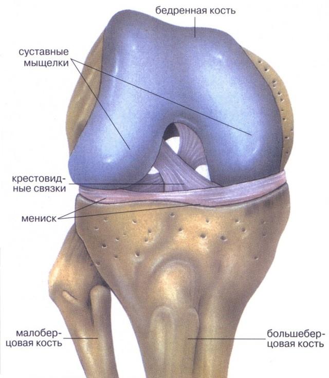 Хроническое воспаление мениска коленного сустава: симптомы, лечение и последствия