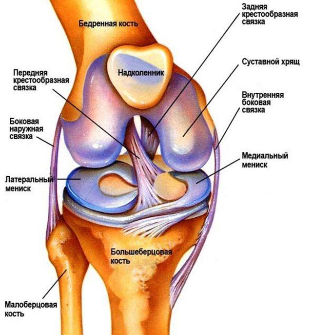 Хондромаляция надколенника коленного сустава у детей: что это такое, лечение мыщелка бедра