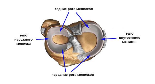 Сколько стоит операция на мениске коленного сустава по замене искуственным протезом
