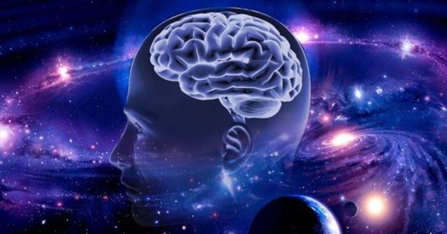 Сколько весит голова человека в среднем: вес черепа и масса головы в кг