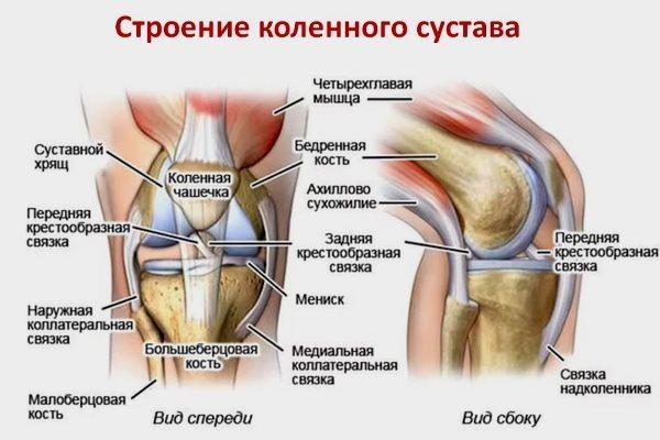 Что показывает УЗИ мягких тканей коленного сустава: диагностика, исследование и заключение