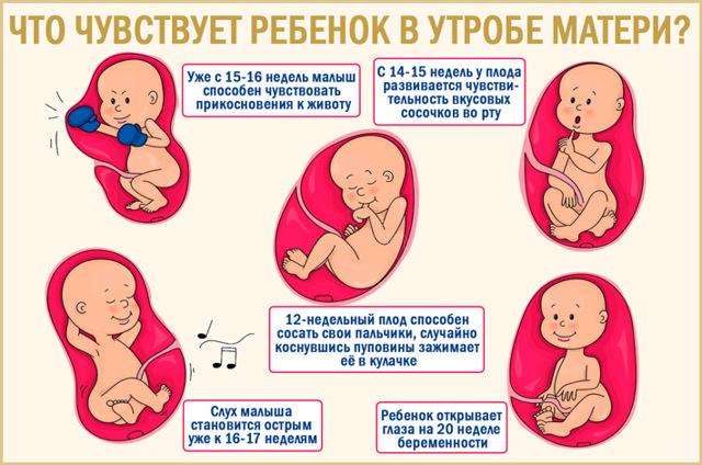 У ребенка потеет голова: причины у новорожденных грудничков и детей 2-5 лет
